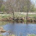 wiosna #wiosna #łąka #wiosenna #zawody #zbiornik #wodny