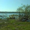 #narew #rzeka #wiosna