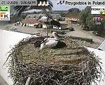 http://images48.fotosik.pl/161/386aadae45aaf938m.jpg
