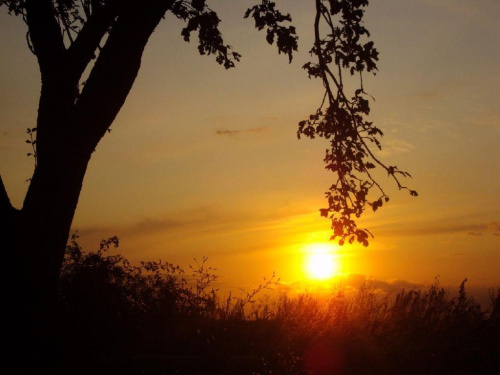 #niebo #słońce #zachód #natura