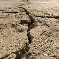 Droga.. do? #makro #droga #pekniecia #artystyczne #wiosna #przyroda #drzewo