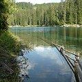 #drzewa #jezioro #natura #przyroda #tapeta #woda #piękne