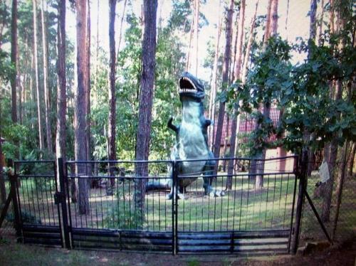 Godzilla z Zalesia Górnego #widok #podwórko