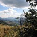 Za krzoka #Góry #Bieszczady #Rozsypaniec #Halicz #Tarnica
