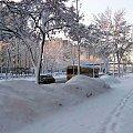 Zaspy ,śniegi a autobus mknie... #Warszawa #śnieg #zima #UlCzerniakowska #autobus