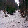 rejon Gołębiewa, biegówki 23.03.2010, ostatni śnieg #Gołębiewo #Gdańsk #przedwiośnie #TrójmiejskiParkKrajobrazowy #LasySopockie #zima #biegówki