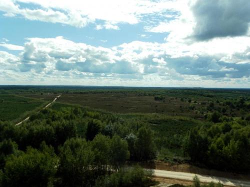 Panorama na wrzosowisko Kłanińskie