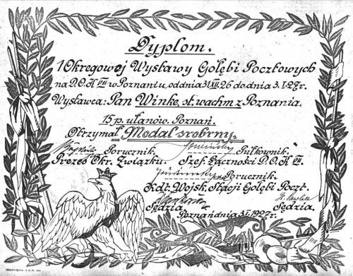 dyplom za gołębie pocztowe