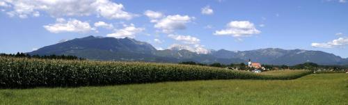 Spokojnie, sielsko i urokliwie... #Słowenia #panorama