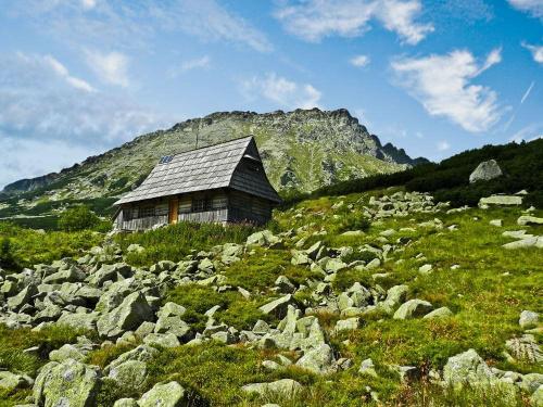 W Dolinie pieciu stawow, jedna z najpiekniejszych dolin w Tatrach:) #tatry #gory #evasaltarski