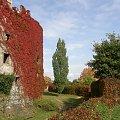 zamek Bolków w jesiennym klimacie #zamek #Bolków #jesień